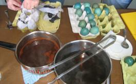 Pripremi stare lonce, ocat, vode,  soc od kave, kopriva, maslačak, cikla, ljuske od luka itd.