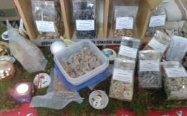 Tjestenine, gljive, domaći kruh